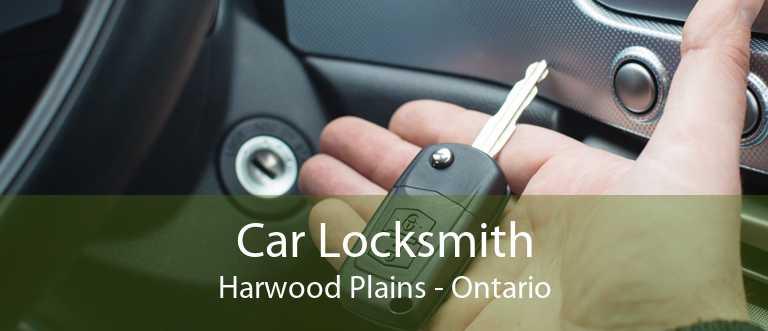 Car Locksmith Harwood Plains - Ontario