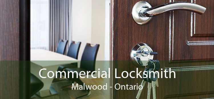 Commercial Locksmith Malwood - Ontario