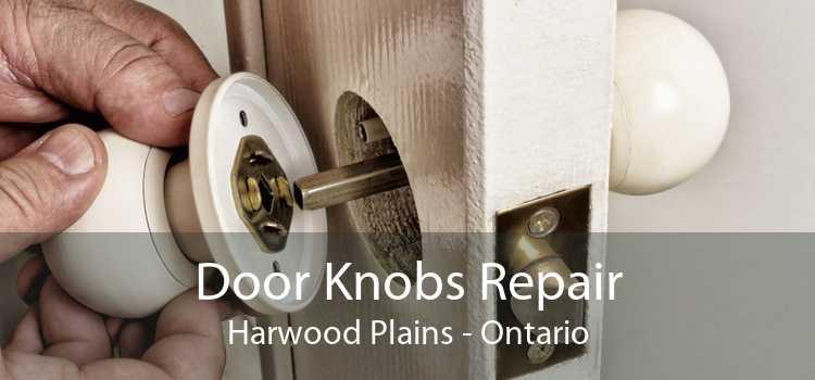 Door Knobs Repair Harwood Plains - Ontario