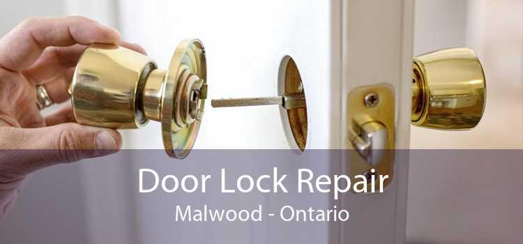 Door Lock Repair Malwood - Ontario