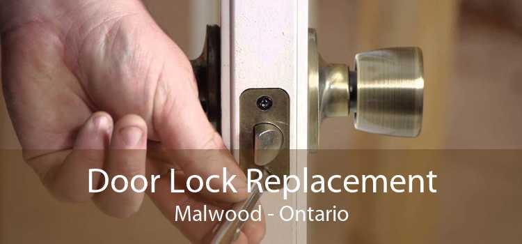 Door Lock Replacement Malwood - Ontario