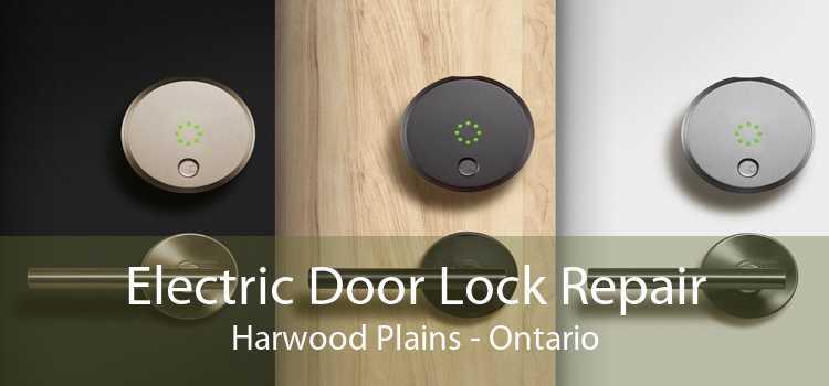 Electric Door Lock Repair Harwood Plains - Ontario