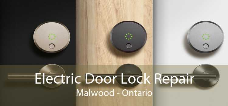 Electric Door Lock Repair Malwood - Ontario