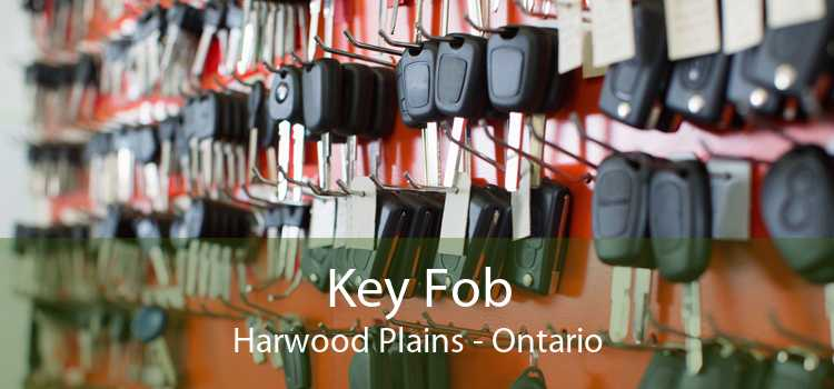 Key Fob Harwood Plains - Ontario