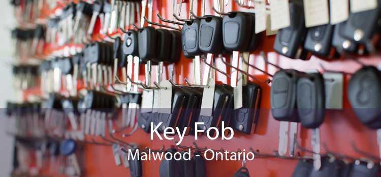 Key Fob Malwood - Ontario