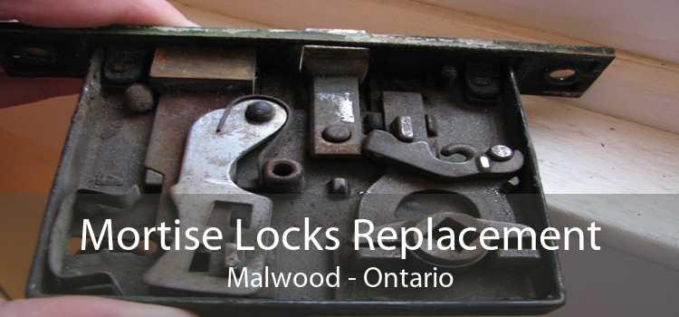 Mortise Locks Replacement Malwood - Ontario