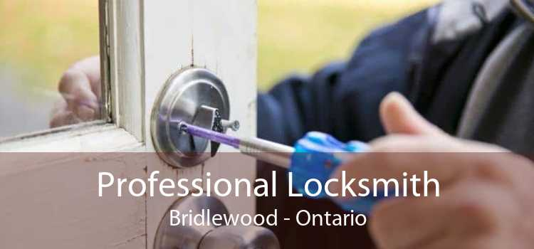 Professional Locksmith Bridlewood - Ontario