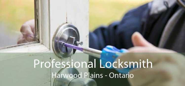 Professional Locksmith Harwood Plains - Ontario