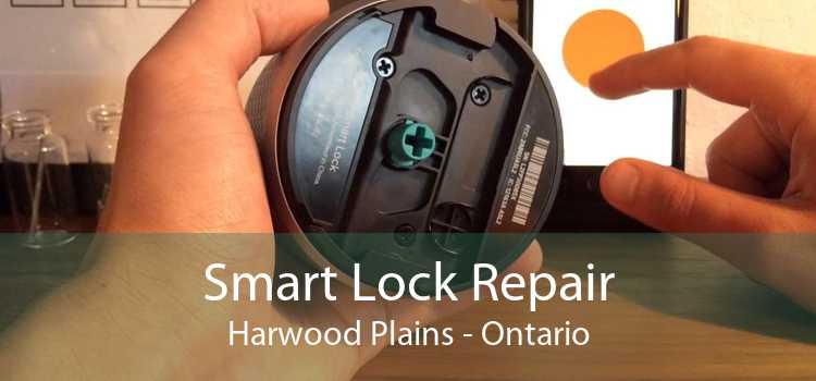 Smart Lock Repair Harwood Plains - Ontario