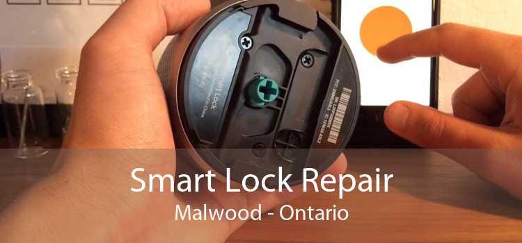 Smart Lock Repair Malwood - Ontario